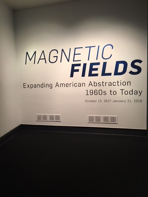 art_magnetic fields wall